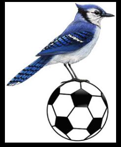 bluejay+football
